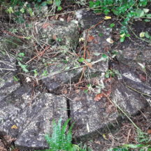 Remains of broken Mill Stone from Madden's Mill Killagoola | Moycullen Historical Society
