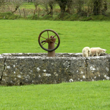 Old water pump at the rear of Flynn's Pub, Menlough | © Gerry Costello