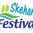 Arts Festival in Skehana1991