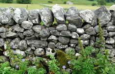 Dry Stone Wall | © Avril Gleeson