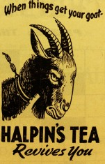 Halpins tea 1960