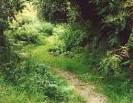 Mass Paths