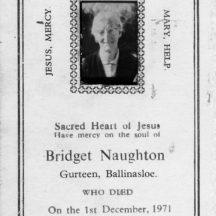 Bridget Naughton