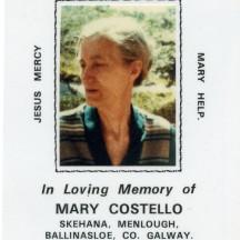 Mary Costello Skehana Publican