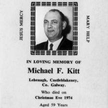 Michael F Kitt