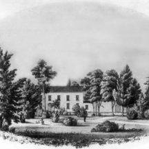 Gardenfield - Kirwan | Courtesy Patrick Melvin & Éamonn de Búrca