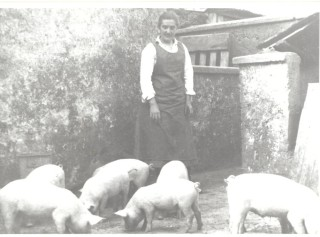Rachel Seale, Alf's grandmother with bonhams in their yard | by John Hueston, Courtesy of Alf Seale