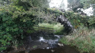 Looking west showing the Rock Bridge | B. Doherty