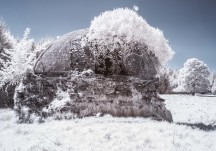 Ice House, Woodlawn