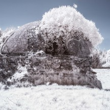 Winter Image of Ice House, Woodlawn | Frank Nevin