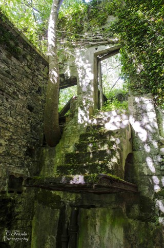 Steps from upper floor of mill leading to hack yard. | Frank Nevin
