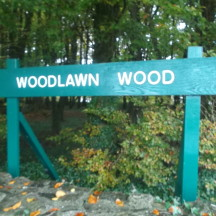 Woodlawn Wood, Eastern entrance | B. Doherty