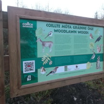 Woodlawn Woods Nature Trail Sign showing birds, trees and wildlife | B. Doherty