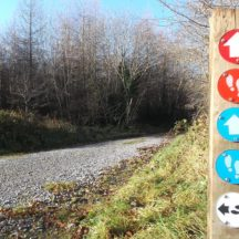 Sign showing various tracks and trails in Woodlawn | B. Doherty 2016
