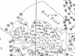 25 inch Ordnance Survey Map of Galway showing fish pond | www.osi.ie