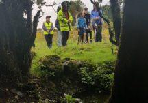 Photographs at Killaan Holy Well