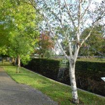 Milltown Park