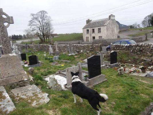 Old Addergoole graveyard | Photo: Pauline Connolly
