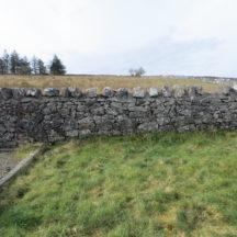 Grave 22.-Double-plot-no-marker | Bernadette Forde, Killererin Heritage Society