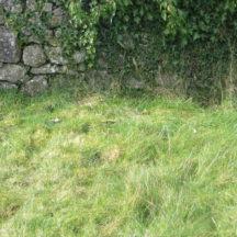 Graave 27: Double plot, no marker | Bernadette Forde, Killererin Heritage Society