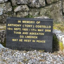 Grave 9: --- ?, Mary, Anthony (Tony) Tuam and Askeaton, Co. Limerick | Bernadette Forde, Killererin Heritage Society