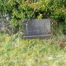 Grave 15: Kemple Family, Imanemore | Bernadette Forde, Killererin Heritage Society