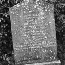 Grave 5 - Inscription on headstone of McGrath and Bane families, Togher Thomas and Patrick McHugh and Edward and Mary Bane and Edward's sister Mary and John Bane | Bernadette Forde, Killererin Heritage Society