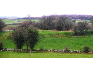 Ringfort in Peak | Photo: B. Forde April 2020