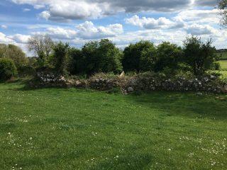 Ruins of Church in Grange,    Photo: B. Forde, May 2020
