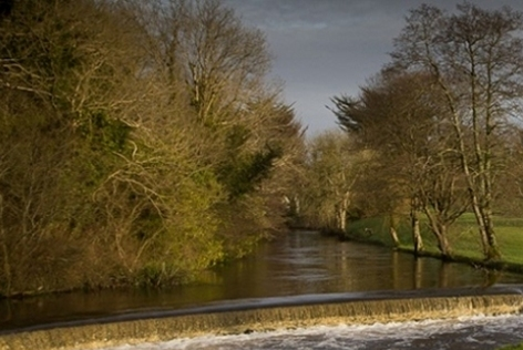 Ballyglunin river | Photo: