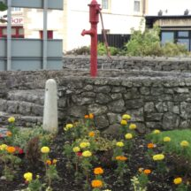 Pump in Barnaderg