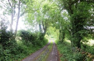 The road just beyond the Gobán Saor's house in Shantallow.   Photo: B. Forde