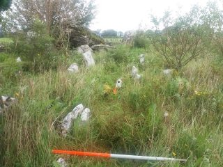 Overgrown Childrens burial ground. Grravenarkers just visible. Megalithic Monument in background | B. Doherty 2020