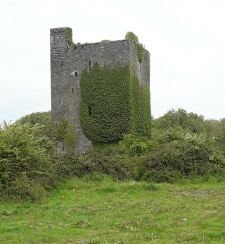 Tower house with ivy growing. batter visible. Good state of repair | B. Doherty 2020