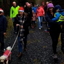 Happy Walkers 2019 | Orla Doherty