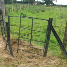 black wrought iron gate | B. Doherty