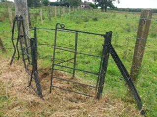 black wrought iron gate | B. Doherty