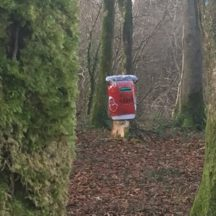 Red box in Woods | M. Kenny