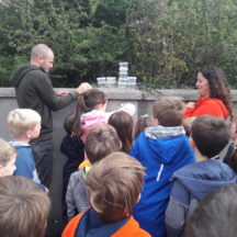 Year of O'Flaherty 'Go Wild' Nature Camp