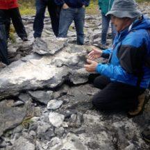 Moycullen's Mini Burren - The Rocks Road - Trail Launch