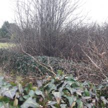 North Eastern section of wall bounding Tobar Bríd | Photo Moycullen Heritage