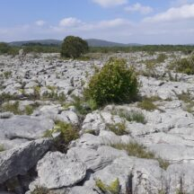 The rocks | Moycullen Heritage