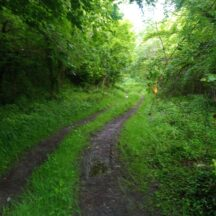 The route of the old Galway Clifden railway line on its way back to Galway | Moycullen Heritage