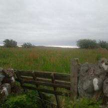 On the long road from Drumaveg | Moycullen Heritage