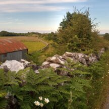 The esker road towards Tullykyne | Moycullen Heritage