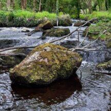 Lough Kip River | Moycullen Heritage