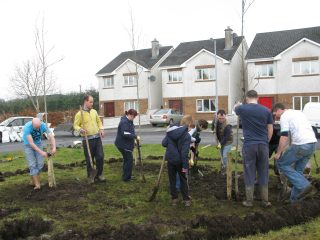 Tree planting in Ballygar