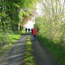 Williamstown nature walk