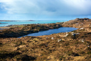 View from Ballinaboy | Roger Harrison