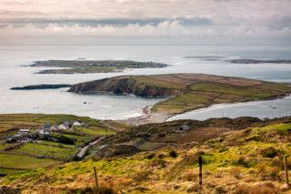 Turbot Island | Roger Harrison